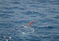 春季钓鱼常见的问题与解决技巧