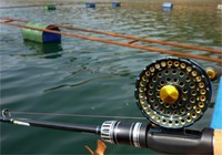 什么是筏釣以及筏釣基礎作釣思路
