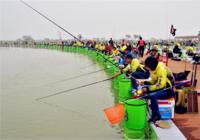 競技釣魚比賽魚種特點與用餌思路