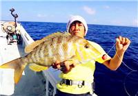 《高桥淡水行》第15集 高桥带领团队出海探钓石斑鱼