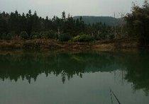 李家寨钓鱼场