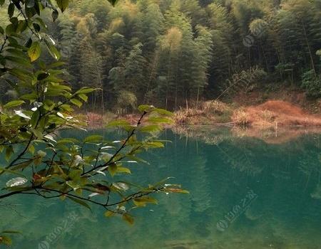 连续作钓小山塘,只为美色!