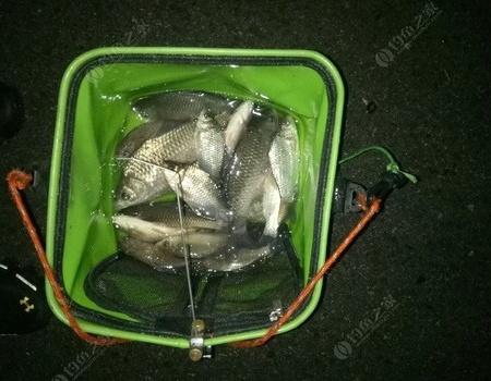 风雨交加春分夜,渔港高岸享渔乐。
