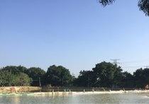 桂花园钓鱼场