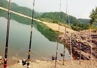 老钓鱼人野钓的必备诱钓思路与技巧
