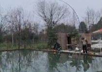 宏发家庭农场钓鱼塘
