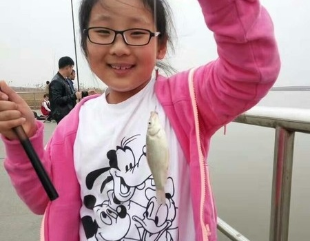 今天陰,適合帶著老婆孩子去釣魚 紅蟲餌料釣鯽魚