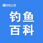 大通国际官网百科
