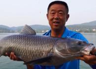 《游钓中国》第四季 第35集 清江猎青第一战 几经辗转多磨难
