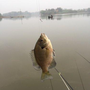 我相信自己能钓到鱼