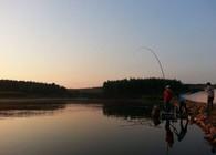 在水库钓鱼时钓鲢鳙的实用技巧分享