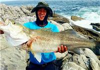 垂釣漁獲圖片精選 釣友連云港海釣喜獲巨物
