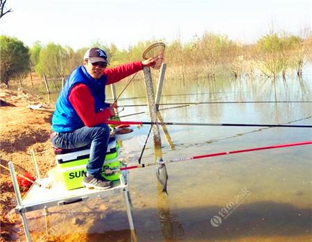 试钓岐山湖 红虫饵料钓鲤鱼