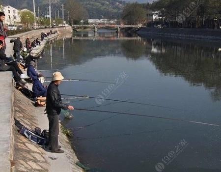 黑坑釣魚要避開醬層 到自然水域要躲稀泥嗎?