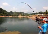 简单分析库钓春季钓鱼技巧