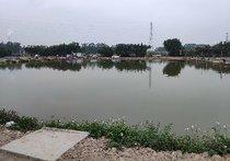 水乡新城钓鱼场