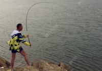 渔具技巧之选用鱼竿及保养