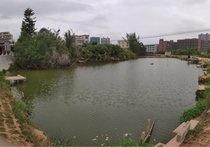 新高岭钓鱼场