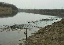 靳家湾小河