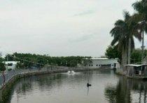 渔乐园钓鱼场