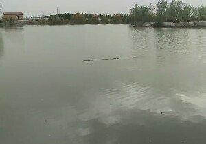 泉水湖垂钓园