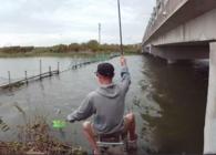 《麦子钓鱼》钓鱼实战56 野河爆钓鲤鱼 数放失手绳