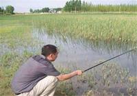誰說傳統釣落伍了?細說傳統釣的技巧及優勢