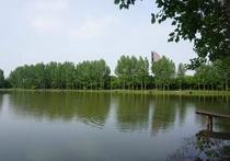 安庆市泳利休闲垂钓中心