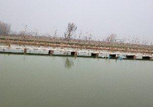 姚村大物塘
