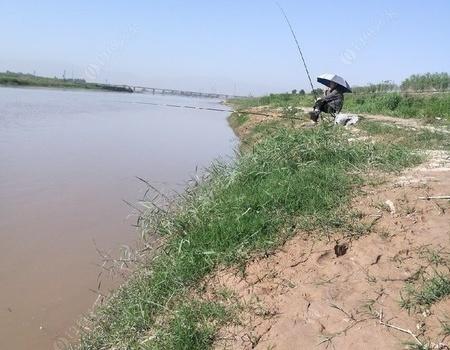 五月第十次坐在了渭河边。差点游戏。 老鬼龙8钓游戏