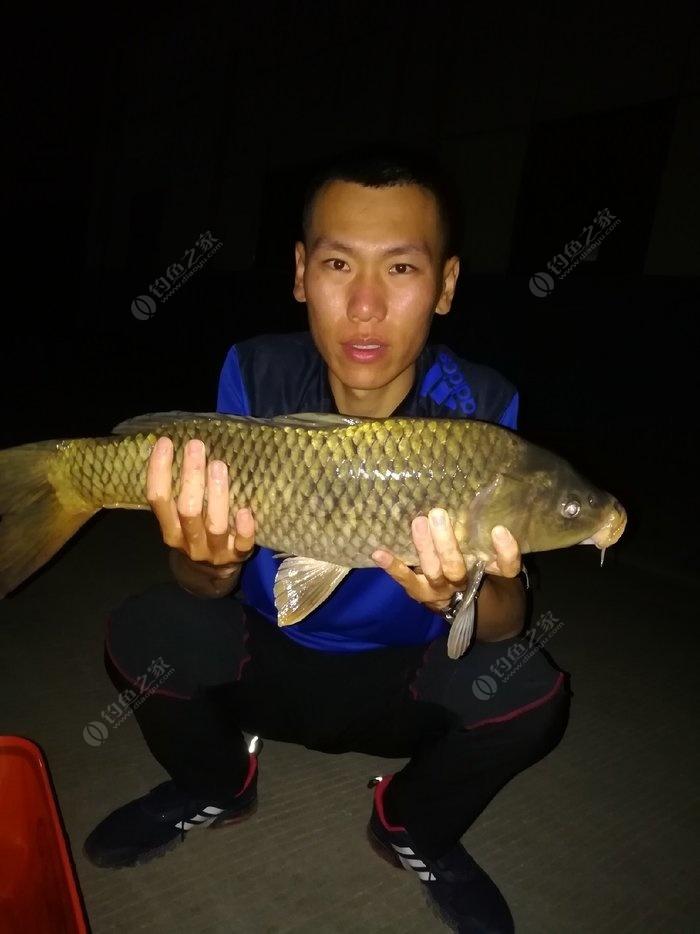 齐鲁钓友_墙夼水库,齐鲁大地的升钟湖 - 钓鱼之家