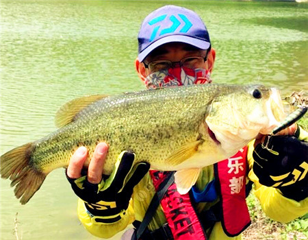 朋友的路亚基地-米诺中鱼45+ 拟饵钓黑鱼