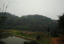 石龙村钓鱼场