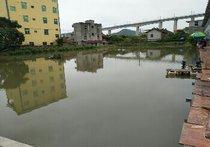 梧塘枫林钓场