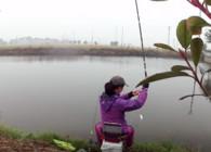 《麦子钓鱼》野河双竿钓板鲫