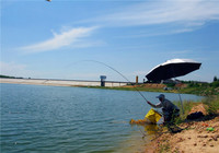 夏季钓鱼天气的最佳选择技巧