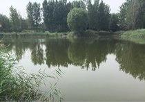 刘早村水塘
