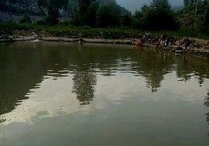 尧门河垂钓园