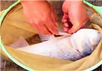 《钓赛进行时》2017无锡渔具展杯千人店长钓鱼大赛(下)