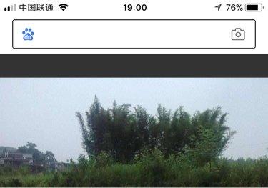 云梦王店村金鑫钓场