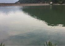 紫竹岩岙水库