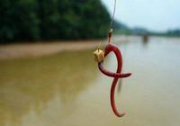 简单有效的蚯蚓饵钓法 学完忍不住要用