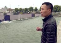 《崩豆百场黑坑系列》虾饵有妙招(上)