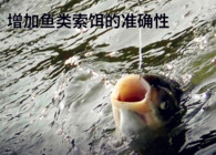 《钓鱼百科》 第六十五集 什么是逗钓?