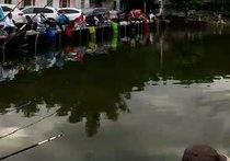 围塘钓鱼场