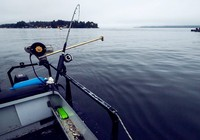 夏季水庫野釣都有哪些技巧?