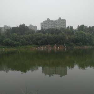 后湖水库生态钓鱼场
