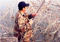 《三本先生》传统钓第95期 春季浅滩钓大鲫(上)