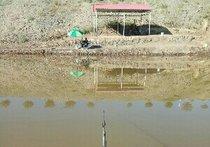 火车站半道鱼塘