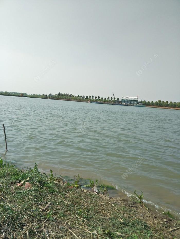 焦岗湖钓场